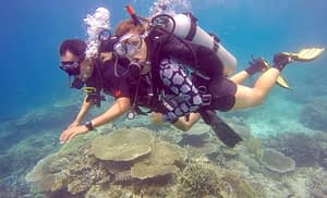 discover scuba diving with Marine Conservation Philippines